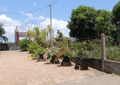 molenpad44-tuin